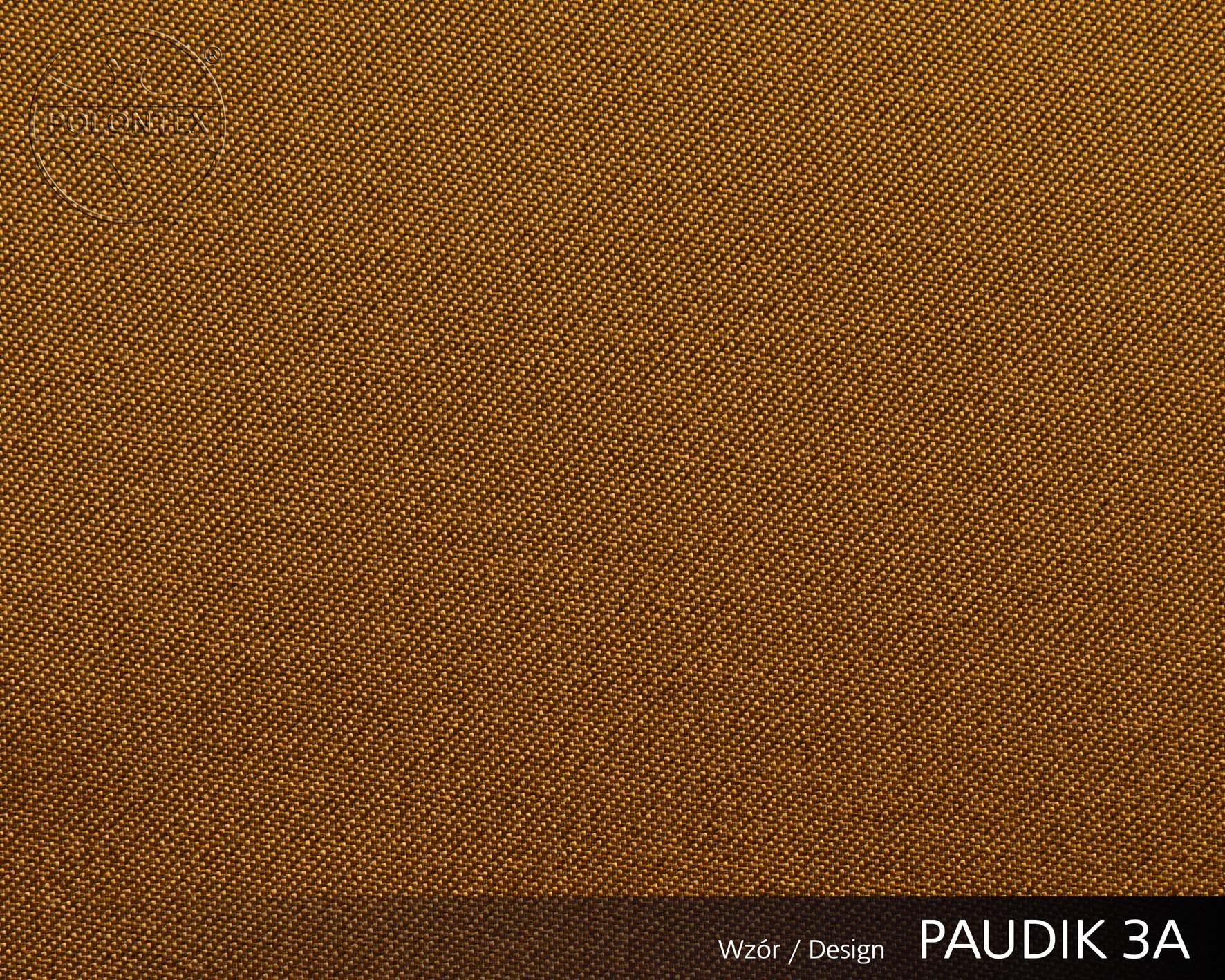 PAUDIK 2223