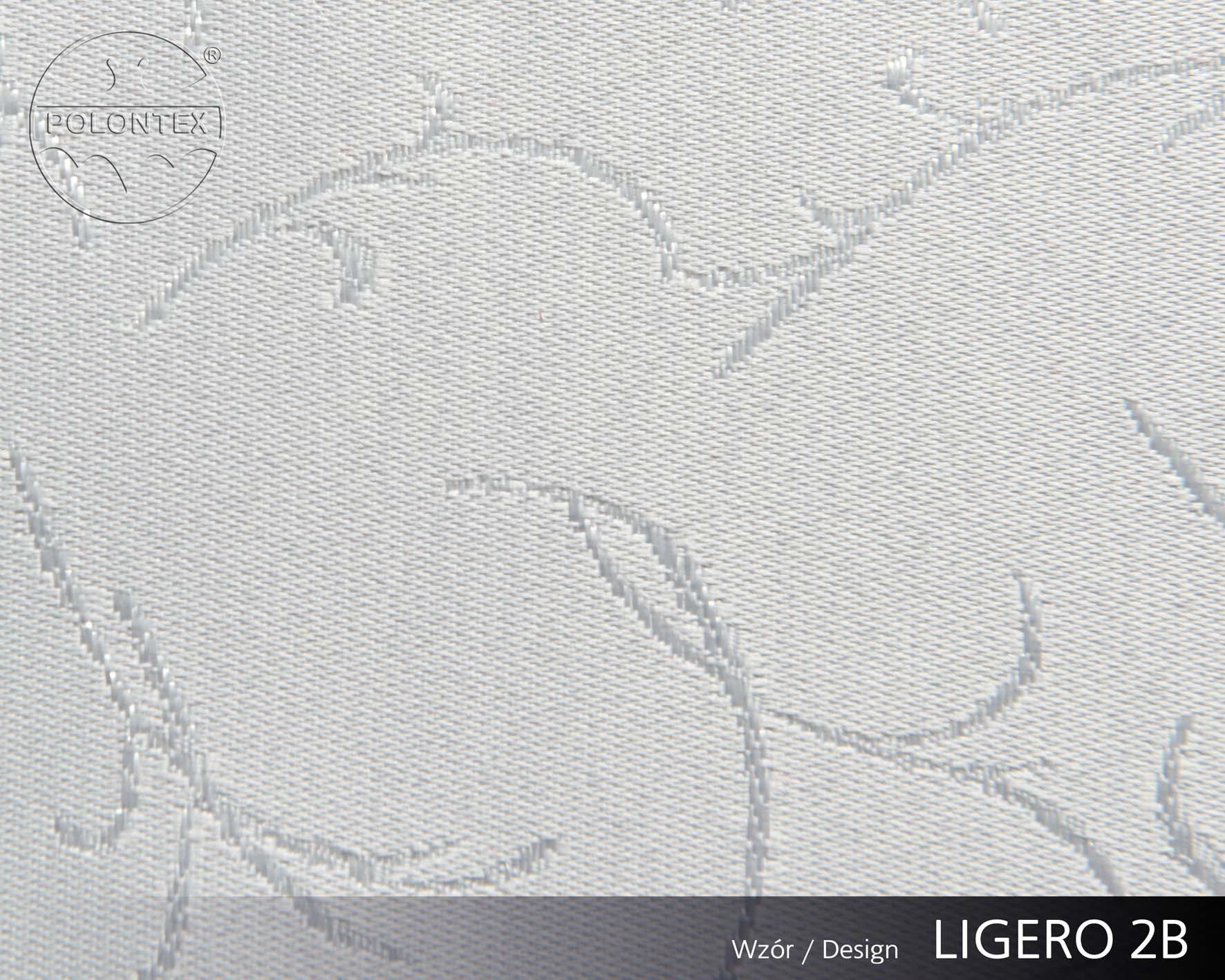 LIGERO B1000